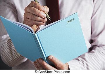 2015, uomo affari, diario, scrittura