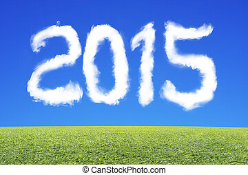 2015 year text cloud in the blue sky with grass