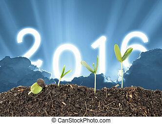 2016, plante, concept, business, avenir, ciel, tout, début, veille, écologie, fond, nouvelle année, grandir