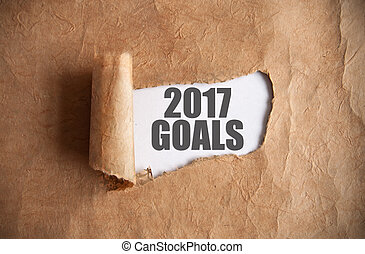 2017 goals uncovered