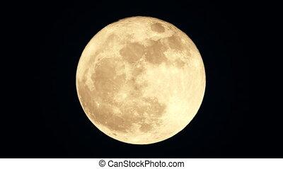 2017 Super Moon moments after moonrise. - The 2017 Super...