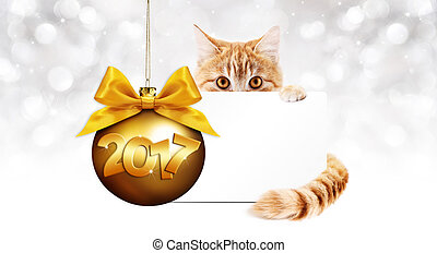 2017 text ginger cat with card and golden christmas ball ...