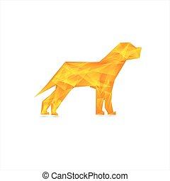 Celebration yellow background with Dog .