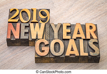 2019 New Year goals word abstract in wood type
