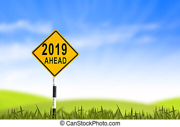 2019, Road sign in the grass field to new year and blue sky, can use as abstract background