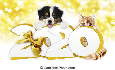 2020 happy new year number text, dog puppy and cat pet with ...