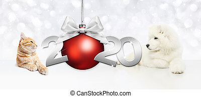 2020 happy new year number text, dog puppy and cat pet with red christmas ball and silver ribbon bow isolated on blurred lights background
