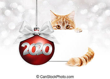 2020 happy new year number text, ginger pet cat with red christmas ball with silver ribbon bow, gift card isolated on silver blurred lights background