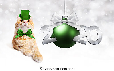 2020 happy new year number text with funny magic ginger cat with green hat and christmas ball isolated on silver blurred lights background