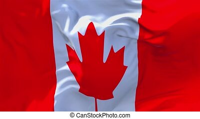 209. Canada Flag Waving in Wind Continuous Seamless Loop Background.