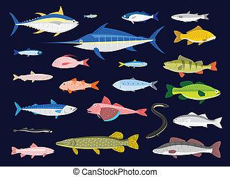 22 Edible Fishes in simplified flat vector cartoon including Tuna, Anchovy, Bluefish, Mullet, Herring, Swordfish, Carp, Smelt, Sea Bream, Sardine, Perch, Goatfish, Shad, Bass, Mackerel, Gurnard (Sea Robin), Eel, European Sea Bass, Lamprey, Trout, Pike, and Pike Perch