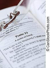 23., 聖書, dof, 賛美歌, 浅い, -, フォーカス, 1(人・つ), 焦点を合わせなさい。, ほとんど, 精選する, 賛美歌, 人気が高い, 開いた