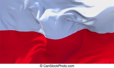 233. Poland Flag Waving in Wind Continuous Seamless Loop Background.