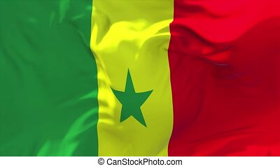 238. Senegal Flag Waving in Wind Continuous Seamless Loop ...