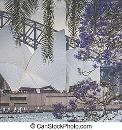 25, casa, él, 25:, 1973., artes, -, finally, sydney, 2015, sydney, era, center., danés, apertura, famoso, diseñado, octubre, ópera, jorn, arquitecto, utzon, australia., vista