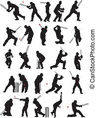 25, krikett, beállít, árnykép, részletez