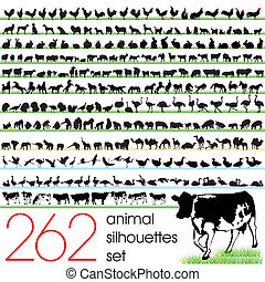 262, animale, silhouette, set