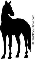 27, .eps, caballo