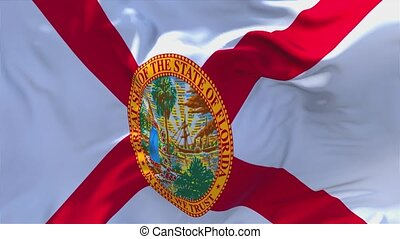 270. Florida Flag Waving in Wind Continuous Seamless Loop...