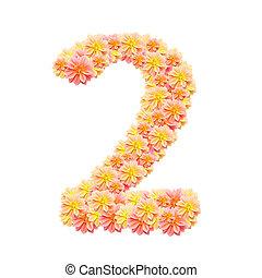 2,flower alphabet isolated on white