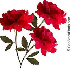 3, ベクトル, roses., 背景, 休日, 赤
