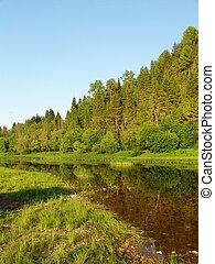 3, 川, 森林