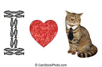 3, amour, chat