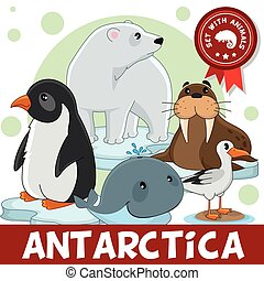 3, animais, antarctica., part.