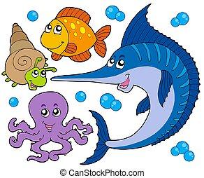 3, animali acquatici, collezione