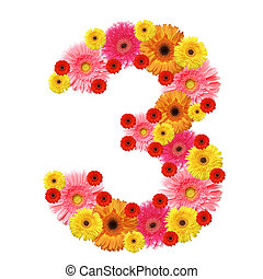 3, arabic numeral