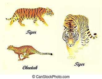 3 Big Cats Paintings - Watercolor Painting Collage of 3 Big ...