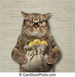 3, bitcoins, sac, chat