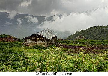 #3, cabana, antigas, colina