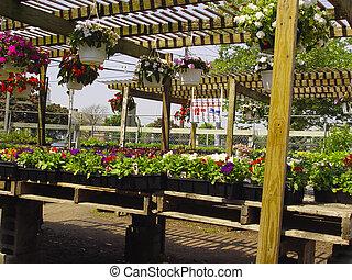 3, centre jardin