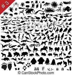 #, 3, conjunto, de, diferente, animales