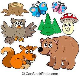 3, dieren, bos, verzameling