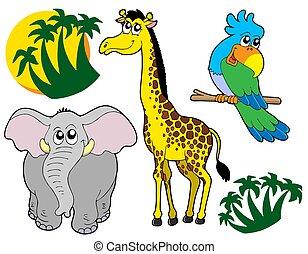 3, dieren, verzameling, afrikaan