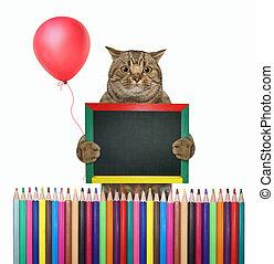 3, gatto, matite, recinto