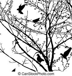 3, gołąb, sylwetka, drzewa