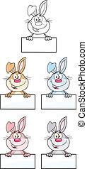 3., litera, królik, komplet, zbiór