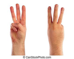 3, mâle, dénombrement, nombre, mains