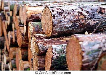 3, pilha, madeira