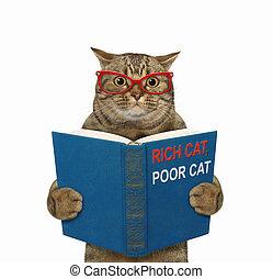 3, standing, libro, gatto