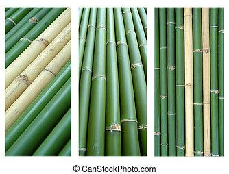 3 style bamboo background