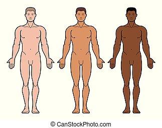 3 types of man skin tone