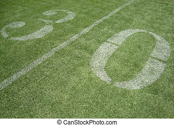 30 yard line on fake grass at the San Francisco 49ers field...