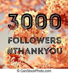 3000 followers