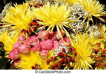33, fleurs