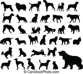 dogs silhouettes - 35 different dogs silhouettes - vector
