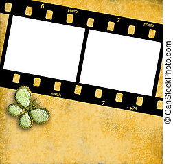 35mm film frame for two photos isolated